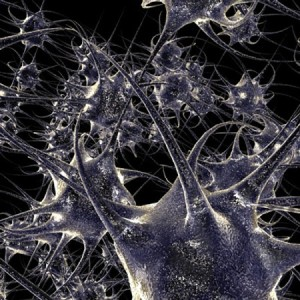 neural_networking3