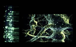 neurons2